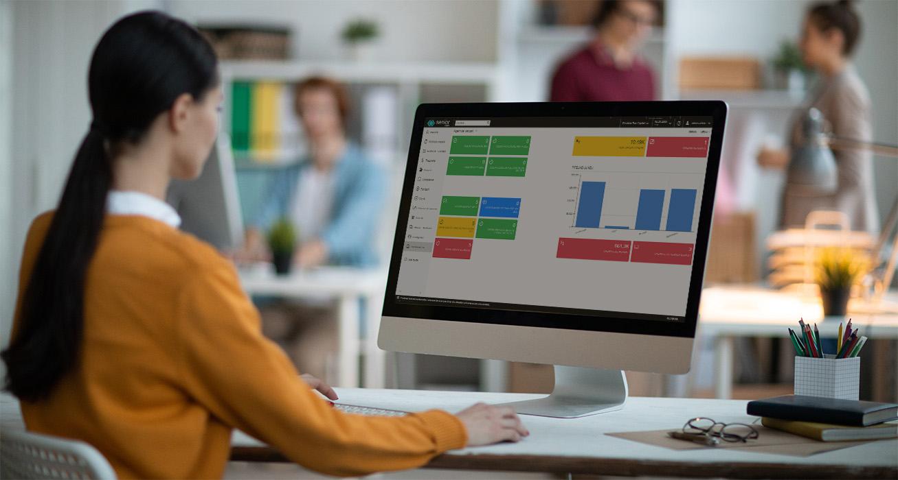 erp-emag-marketplace-soft-erp-b2b-b2c-erp-software-integrat-7.1
